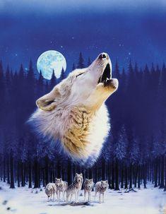 #Животные, #Волки, #Луна, #аватары, #картинки, #фото, #авы, https://avatarko.ru/kartinka/3241