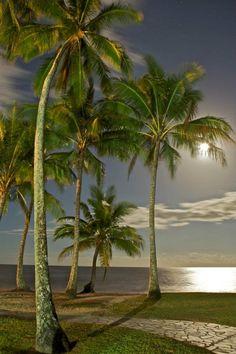Palm Cove full moon.