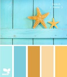 This pallett is the natural colors that will surround us on the beach. Any colors I choose to incorporate in the wedding, I think, should sharply contrast these.... I'm thinking coral, bright pink, kelly greens and deep purples....
