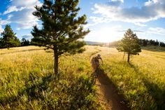 Liam Dunn and Cormac Dunn ride the Niner Bikes AIR 9 RDO at Hall Ranch near Lyons, Colorado.