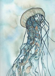 A collection of whimsical sea nettle jellyfish borne from my love of watercolour, and my fascination with aquatic suspension.