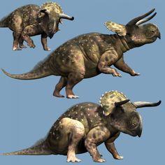 Nasutoceratops DR   Animals for Daz Studio and Poser