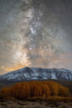 Brandon Yoshizawa, Japan – Nature: The golden aspen grove in Fall, the Eastern Sierras, the fresh snowfall, and some dust lane details of the Milky Way.