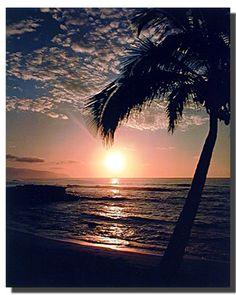 Wall Decor Hawaiian Sunset at Ocean Beach Scenery Nature Art Print Poster Beautiful Sunset, Beautiful Places, Beautiful Sites, Beautiful Scenery, Types Of Photography, Landscape Photography, Hawaiian Sunset, Beach Scenery, Nature Posters