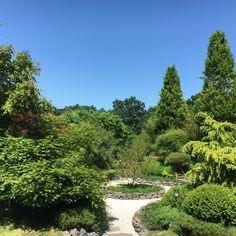 Senkgarten mit Kies, Gartenarchitektur