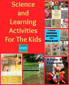 Science and Learning Activities For The Kids frogsandsnailsandpuppydogtail.com #science #learning #school #kuedkids