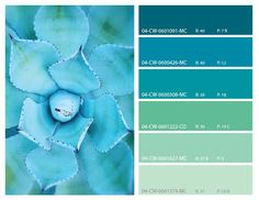 Teal and turquoise color palette