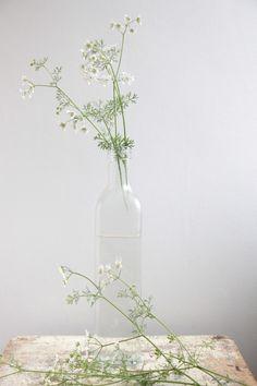 Bouteille vase barefootstyling.com
