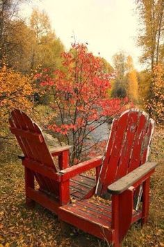 Autumn Outdoors....beautiful...for two