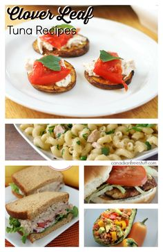 15 Different ideas to spruce up your Tuna ! One picture with 15  different recipes to choose from #Tuna Recipes