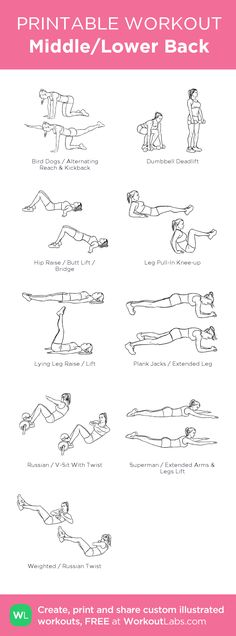 Middle/Lower Back