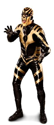 "Goldust - Dustin Rhodes  Height: 6'6""  Weight: 243 lbs.  From: Hollywood, Calif.  Signature Move: Curtain Call, Golden Globes  Career Highlights: Intercontinental Champion, World Tag Team Champion"