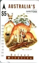 Phonecard: Kangaroo (Card Phone, Australia) (Unique Wildlife) Car:4P9534