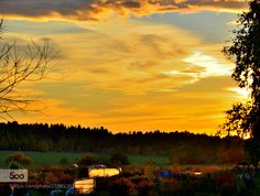 Framed sunset - Pinned by Mak Khalaf Sunset captured around our vegetable plot. Nature beautifulcloudsgardenskysunsettree by xyunjian