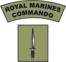 royal marines commando - Google Search British Marine, British Army, Marine Recon, Marine Commandos, Us Navy Seals, Falklands War, British Armed Forces, Military Insignia, Green Beret