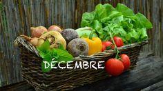 Décembre sous la neige, la récolte se protège. A la veille des fêtes de fin d'année, on s'emmitoufle et on recherche chaleur et réconfort pour parer encore...
