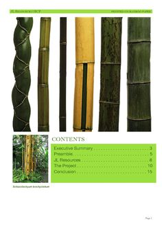 A 16-page document proposing a bamboo plantation with sustainable bottom-lines. I played roles in conceptualization, design, development and production.