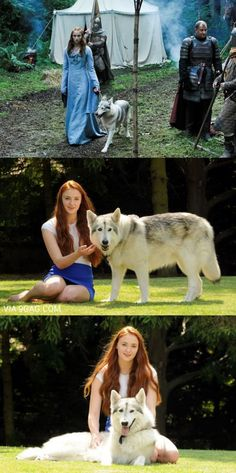 """Sansa Stark's actress, Sophie Turner, adopted her real life dire wolf! The Mahlek Northern Inuit Dog is named Zunni, and the Turner family adopted hwe from the series... """"We kind of fell in love with my character's dire wolf, Lady, on set. """"We knew Lady died and they wanted to re-home her. My mum persuaded them to let us adopt her."""""""