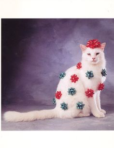 This is a very patient Christmas bow kitty! Silly Cats, Cats And Kittens, Funny Cats, Christmas Kitten, Christmas Animals, Merry Christmas, Xmas, I Love Cats, Crazy Cats