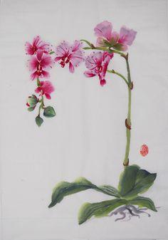 mageta-orchid-brightened-2.jpg (2785×3977)