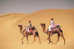 Camel ride in the desert of Hurghada