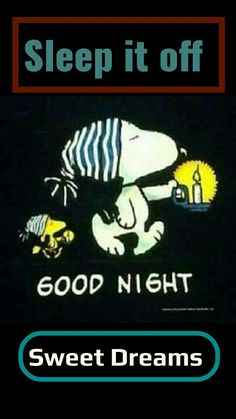 Yes Sleep it Away for a Better Day. Good Night Messages, Good Night Quotes, Good Morning Good Night, Snoopy Love, Snoopy And Woodstock, Peanuts Cartoon, Peanuts Snoopy, Hugs And Kisses Quotes, Christian Images
