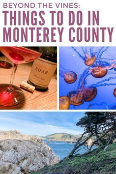 The is a lot to uncork in Monterey County wine country! Here are some seriously fun things to do in Monterey County that go beyond sipping wine. Monterey California, Central California, Monterey County, Monterey Bay, California Travel, Cool Places To Visit, Places To Travel, Stuff To Do, Things To Do