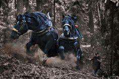 4wd horsepower
