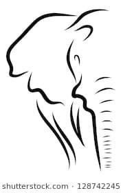 Elephant Line Art Elephant Stencil, Elephant Art, Elephant Tattoos, Elephant Canvas Painting, Elephant Doodle, Elephant Logo, Elephant Line Drawing, Elephant Drawings, Elephant Sketch