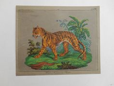 A Beautiful Berlin WoolWork Tiger Pattern Produced By Hertz   Wegener In  Berlin 38ac977c7adfb
