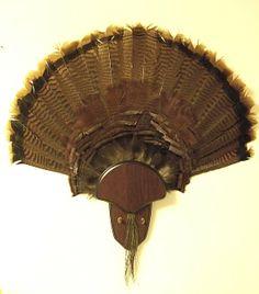A turkey fan mount I did