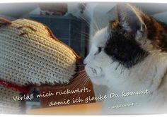 https://zaunwickenwelt.blogspot.de/