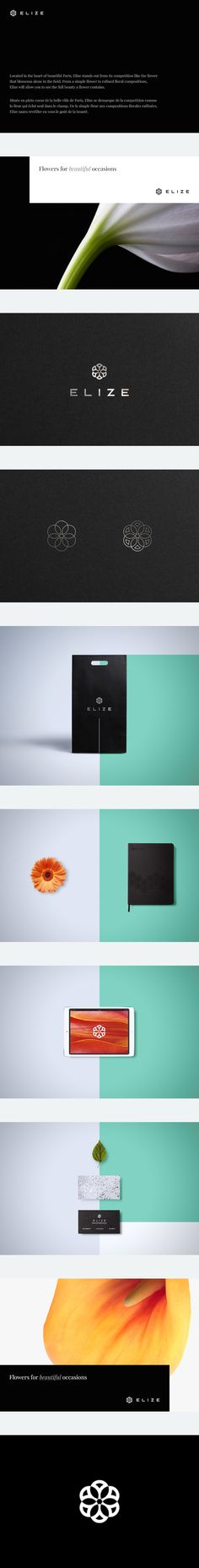 "@Behance portfolio: ""ELIZE"" https://www.behance.net/gallery/21725201/ELIZE by Cris Labno"