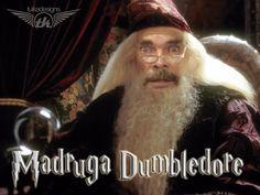 Madruga Dumbledore