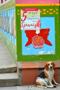 5 ways to improve your Spanish from home (in times of - Becci Abroad Travel Articles, Travel Tips, Learning Apps, South America Travel, That One Friend, Group Travel, Top Destinations, How To Speak Spanish, Travel Stuff