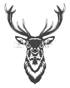 Monochrome Deer Head Isolated On White Background. Vector   Illustration. Royalty Free Cliparts, Vectors, And Stock Illustration. Image 46083670.