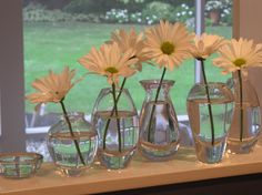 We have these vases at courtney farms.