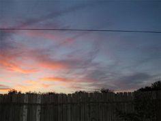 My backyard early morning