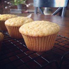 orange poppy olive oil muffins