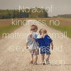 Kindness, gratitude, mindfulness.