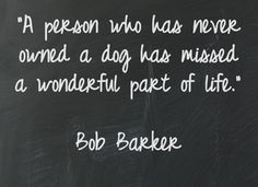 """""""A person who has never owned a dog has missed a wonderful part of life.""""    Bob Barker"""