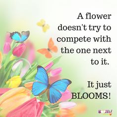 A flower doesn't try to compete