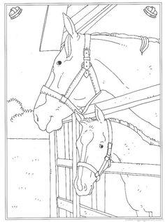 Hele Mooie Kleurplaten Van Paarden Paard 01 22 Png 2400 215 3200 Thema Paarden Kleuters