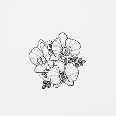 Terrific Images Orchid Flower drawing Concepts Have you got a lovely orchid at your home that you're not very guaranteed exactly how to maintain? Orchid Drawing, Floral Drawing, Drawing Flowers, Drawing Art, Tattoo Drawings, Cool Drawings, Tattoo Sketches, Art Floral, Orchid Flower Tattoos