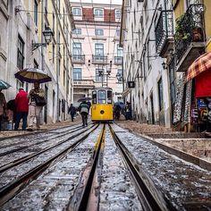 present  I G  S P E C I A L  M E N T I O N  P H O T O    @pawel78  L O C A T I O N   Lisbon-Portugal  __________________________________  F R O M   @ig_europa  A D M I N   @emil_io @maraefrida @giuliano_abate S E L E C T E D   our team  F E A U T U R E D  T A G   #ig_europa #ig_europe  M A I L   igworldclub@gmail.com S O C I A L   Facebook  Twitter M E M B E R S   @igworldclub_officialaccount  C O U N T R Y  R E Q U I R E D   If you want to join us and open an igworldclub account of your…