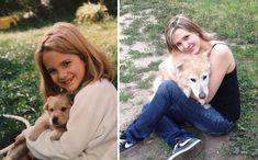 22 Fotos Do Antes E Depois De Cachorros