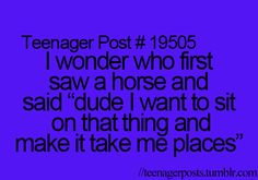 my goal is to make you smile or laugh. my uploads ☯ homeasksubmit numbered posts about Horse Quotes, Sign Quotes, Funny Quotes, Laughed Until We Cried, I Laughed, Teen Posts, Teenager Posts, Equestrian Quotes, Equestrian Problems