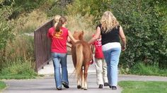 Highland horse ranch works to empower those with disabilities (KSL News Radio, Utah)