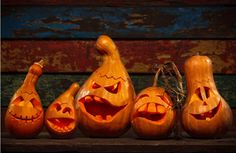 #halloween #doozo #pompoen