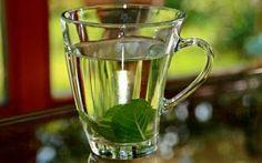 ¿Cansada (o) de La Candidiasis? Estos Remedios Naturales Te Ayudaran a Eliminar La Candidiasis de Forma Rapida y Efectiva.